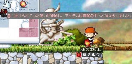 Maple0466