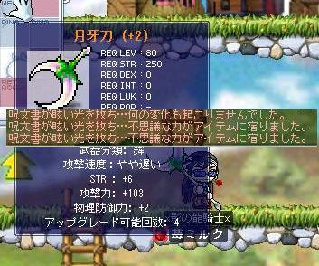Maple0476