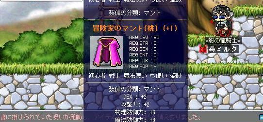 Maple0582