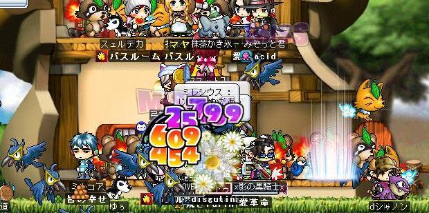 Maple1184