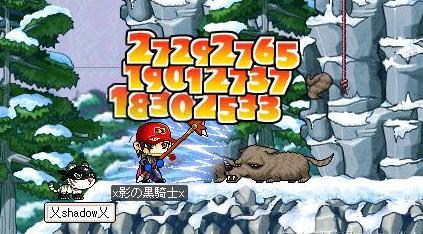 Maple1268