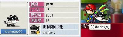 Maple1279