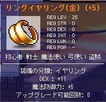 Maple1304