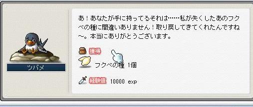 Maple1756