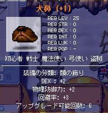 Maple2062