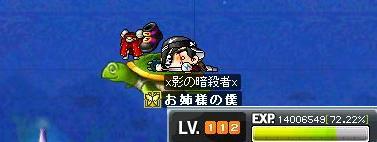 Maple2158