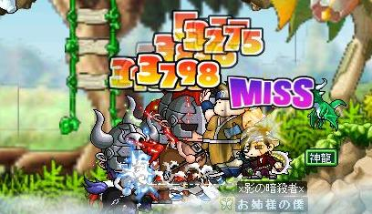 Maple2234