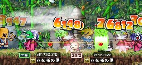 Maple2291