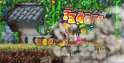 Maple2292
