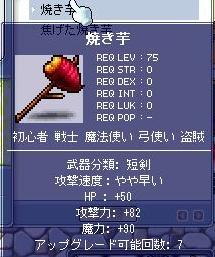 Maple2645