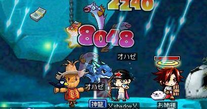 Maple2730