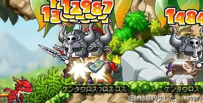 Maple3053