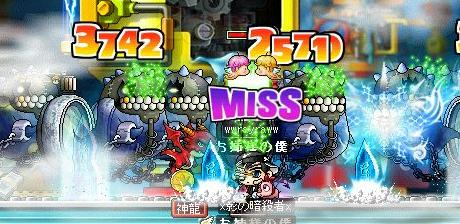Maple3144