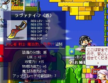 Maple3146