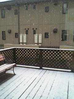 雪やコンコン あられやコンコン・・・