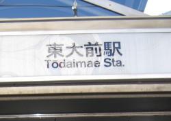 to-daimae2.jpg