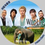 wildlife1.jpg