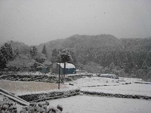 2 一変した雪