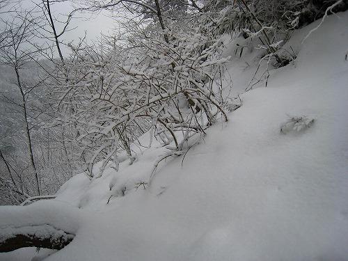 20 新雪