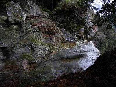 2009-03-01-033.jpg