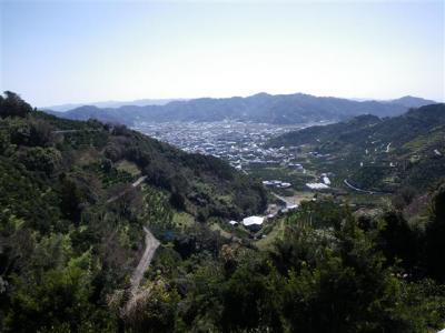 2009-03-15-155.jpg