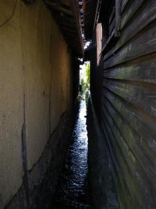 2009-03-15-169.jpg
