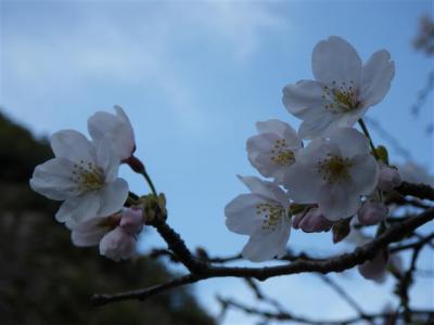 2009-03-21-231.jpg