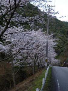 2009-03-21-235.jpg