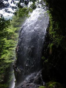 2009-05-03-124.jpg