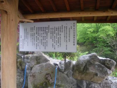 2009-05-06-103.jpg