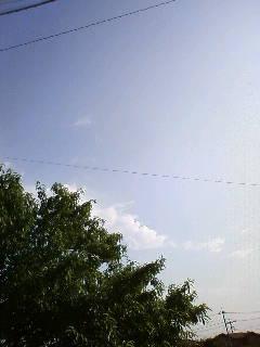 20090617091219