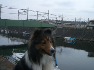 江ノ電来ないざますね。