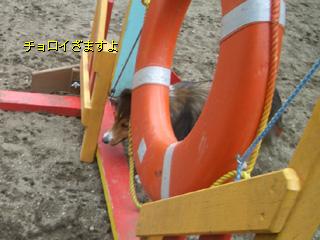 タイヤは、隙間を抜けるのが定石ざます。