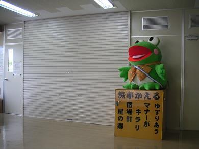 シャッターがまだ閉まってる。カエルのお出迎え!