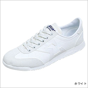 p_jaguar04_white.jpg
