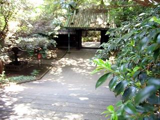 湯島聖堂7
