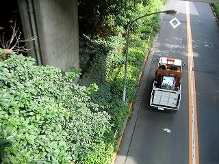 東京都懸垂電車4