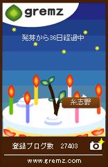 gremz_birthday