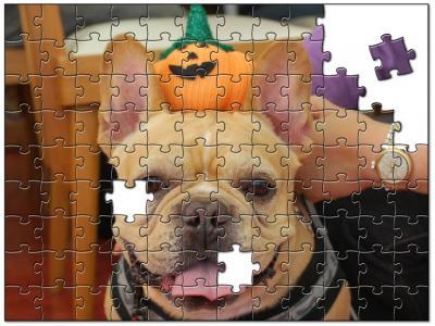 jigsaw2381130.jpg
