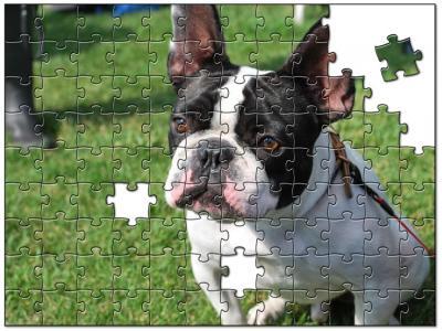 jigsaw5958834.jpg