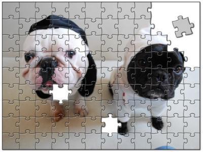 jigsaw7487058.jpg