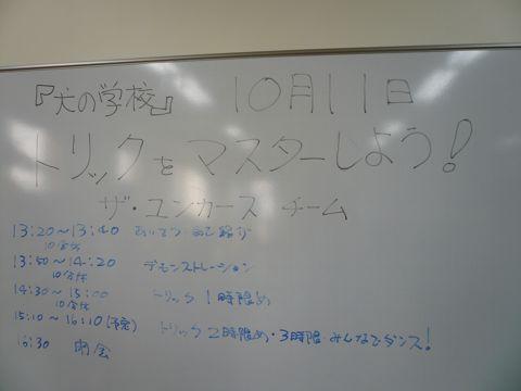 P1060251.jpg