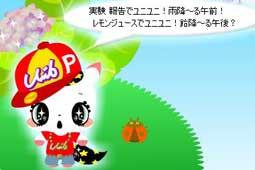 koyuki531