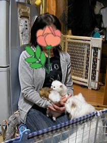 nagashima1.jpg