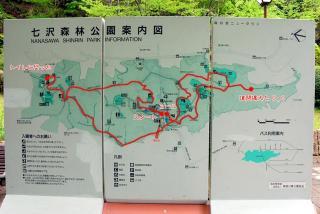七沢森林公園へGO!(5)
