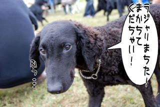 フラットキャンプ参加~♪(7)