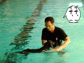 ジンガ初泳ぎに挑戦の巻(5)