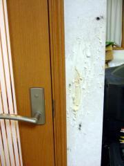 ルーアがフリーで留守番中にガリガリした壁にも黒い毛が付着していてドキッとさせられる。
