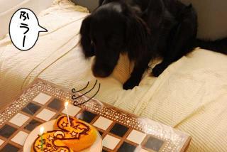 ルーアくん、誕生日ケーキを食べるの巻(2)