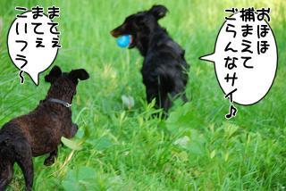 初散歩♪(3)